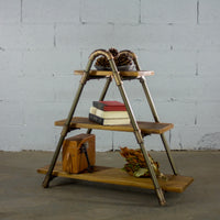 Rustic ladder shelf with plant and books. Made with Paulownia wood and aluminum pipes.