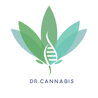 Dr. Cannabis Brazil website link