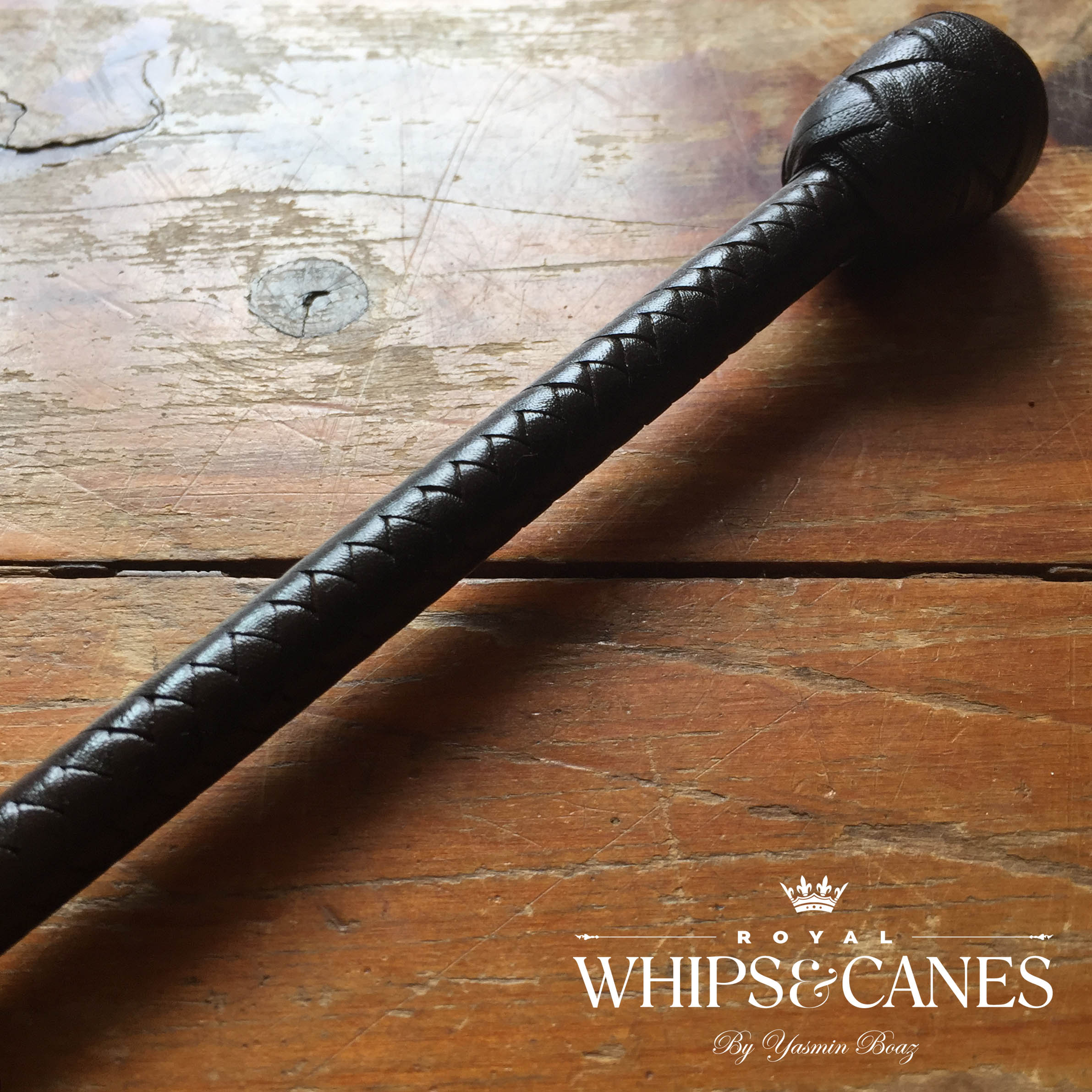 Lead Rein / First Ridden Plaited Leather Knob Cane