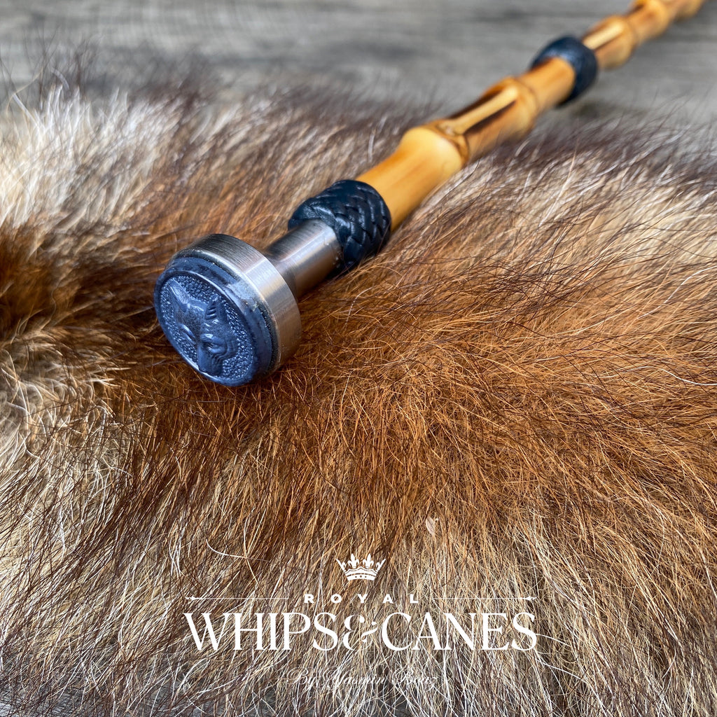 Navy Fox Bamboo Show Cane - In Stock