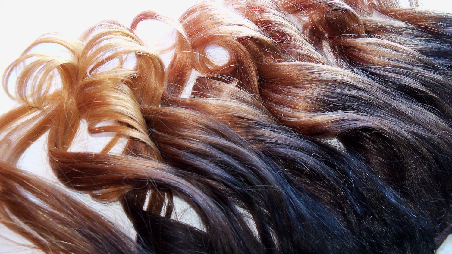 22 in Ombre Brown Black Brown Auburn Blonde Clip Human Hair Extensions Dip Dye Fade