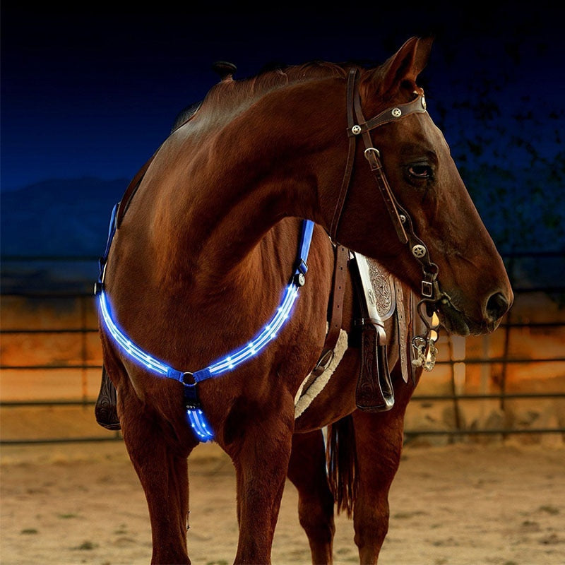 LED Horse Harness - azponysolutions