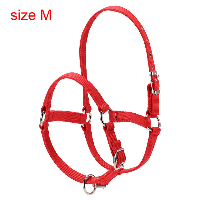 Durable Horse Head Collar - azponysolutions