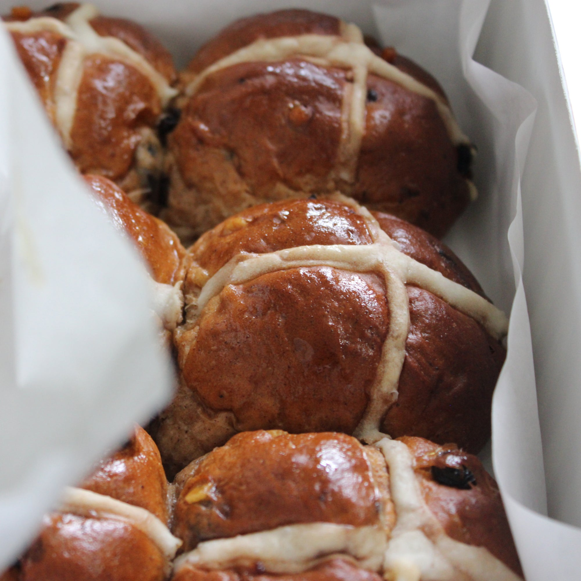 Hot Cross Buns Launched