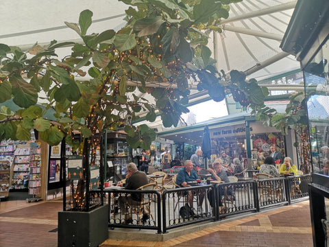 A central piazza style courtyard with large leafy fig plants shadowing cafe tables