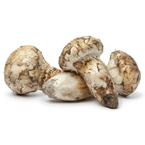 Mikuni Wild Harvest wild foraged mushrooms