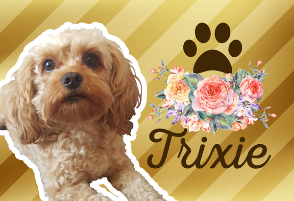 Pet Photo and Name on a Mat Gold Floral-FacedShop