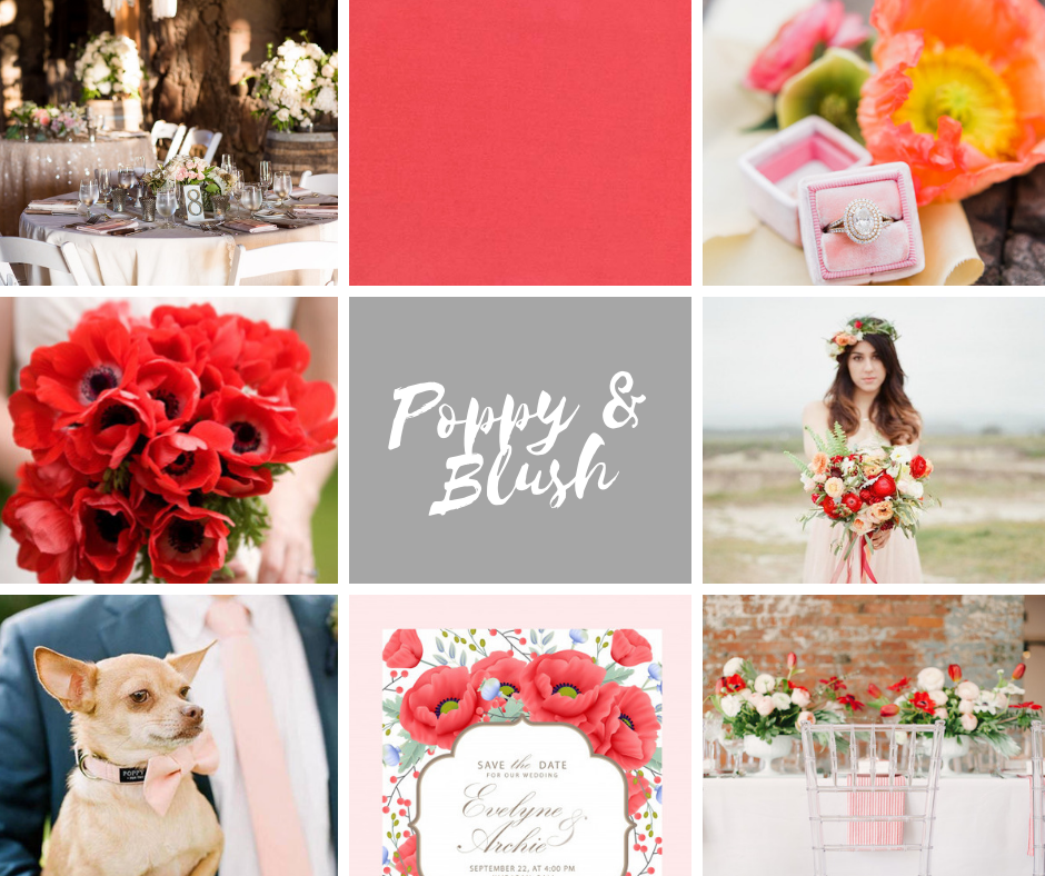 Wistful Wedding Colors | Poppy and Blush