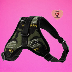 The Big Spot Harness☆