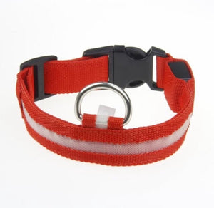 Night Light LED Dog Collar Red