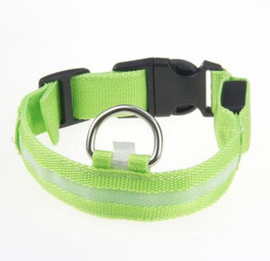 Night Light LED Dog Collar Green