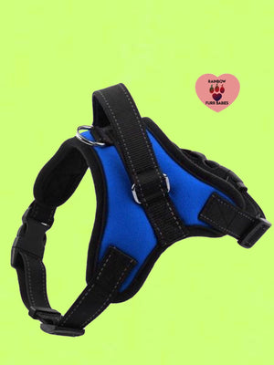 The Big Spot Harness Blue