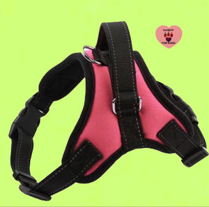 The Big Spot Harness Pink