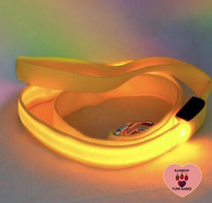Nightlight Stroll Dog Leash - Yellow