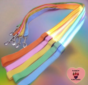 Nightlight Stroll Dog Leash Rainbow