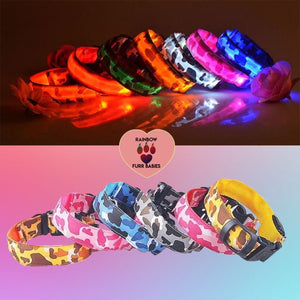 Glowing LED Collar Luminous Night Safety Light-up | Rainbow Fur Babies