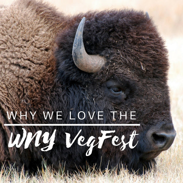 WNY VegFest and Niagara Falls
