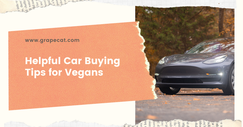Helpful Car Buying Tips for Vegans