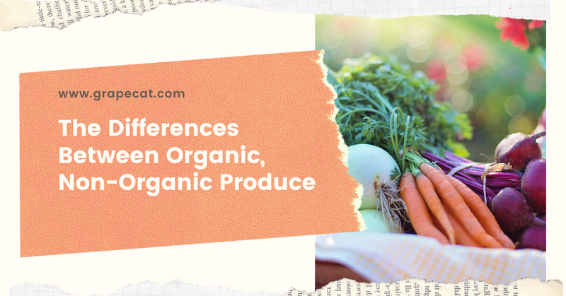 The Differences Between Organic, Non-Organic Produce