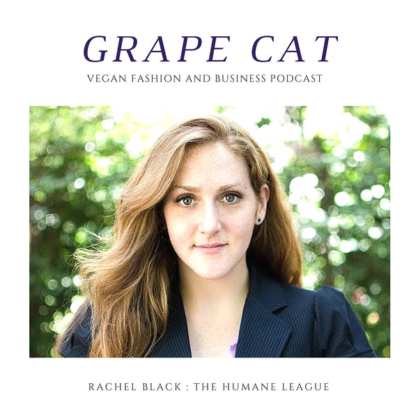 Interview with Rachel Black from The Humane League