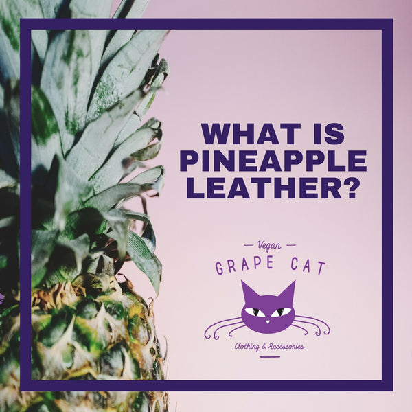 What is Pineapple Leather?