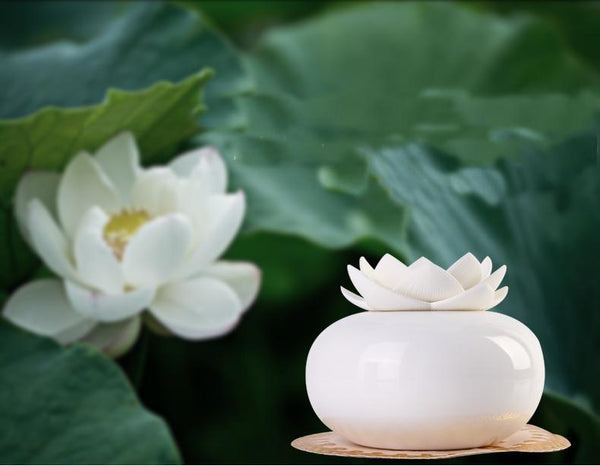 mini humidificateur fleur lotus