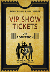 Image of VIP Admission Ticket