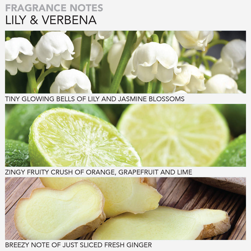 Lily & Verbena Softening Hand Lotion