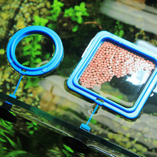 Aquarium Feeding Ring Floating Food Tray Feeder