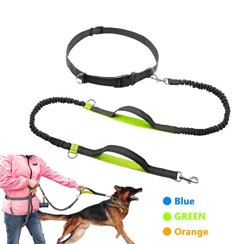 Sports Dog Leash For Running & Jogging