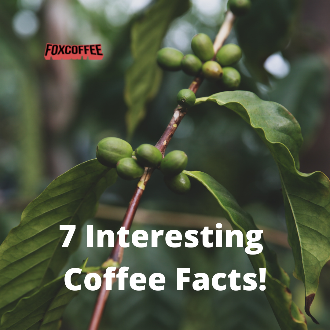 7 Interesting Coffee Facts!