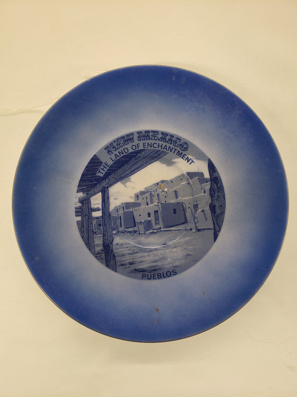 New Mexico Vintage Plate
