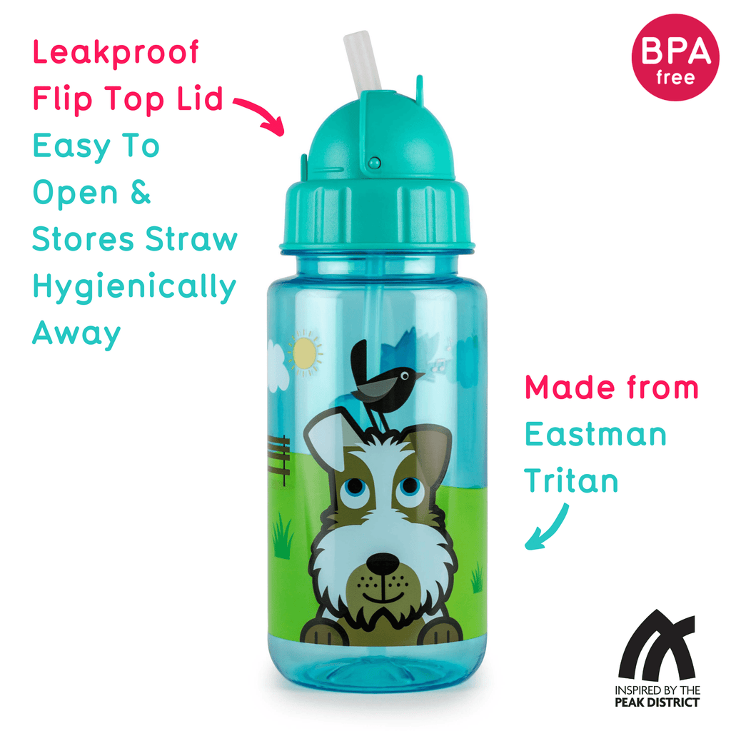 Flip Top Kids Water Bottle with Straw, Scruff the Dog, 400ml