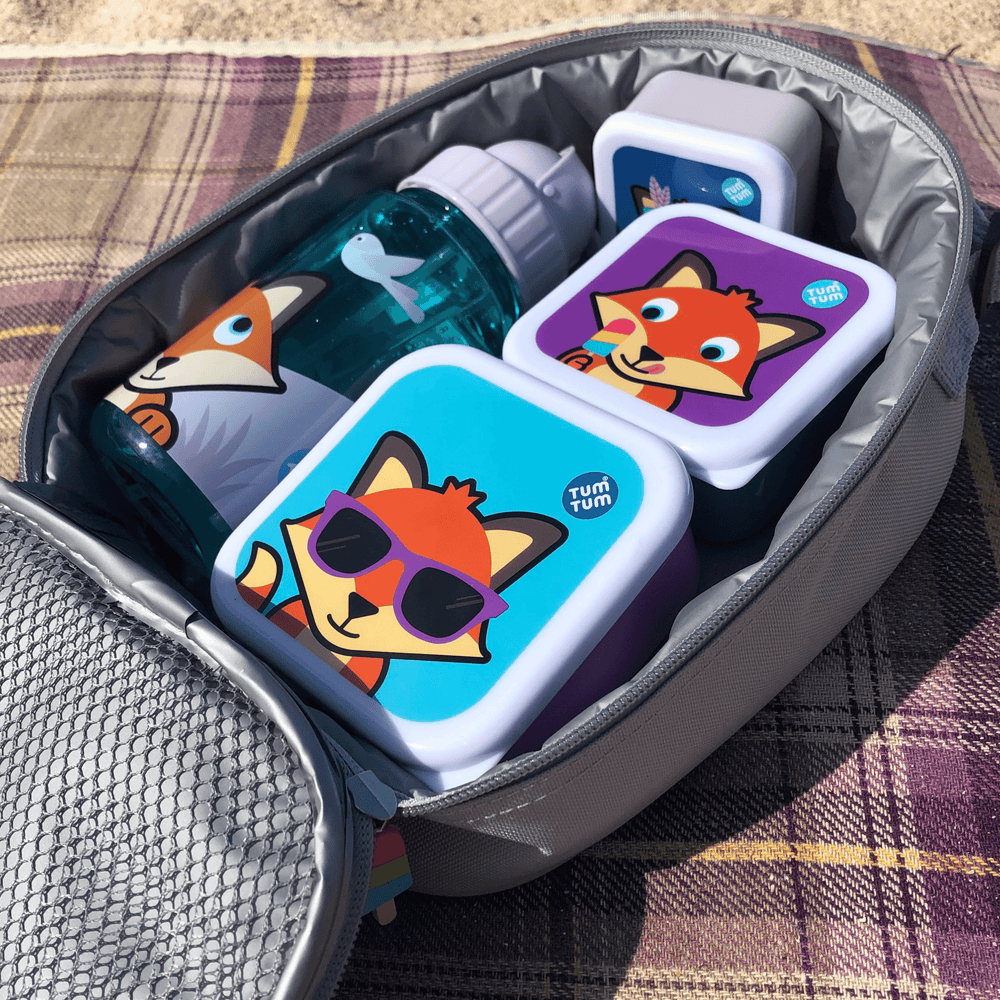 Childrens lunch boxes fox