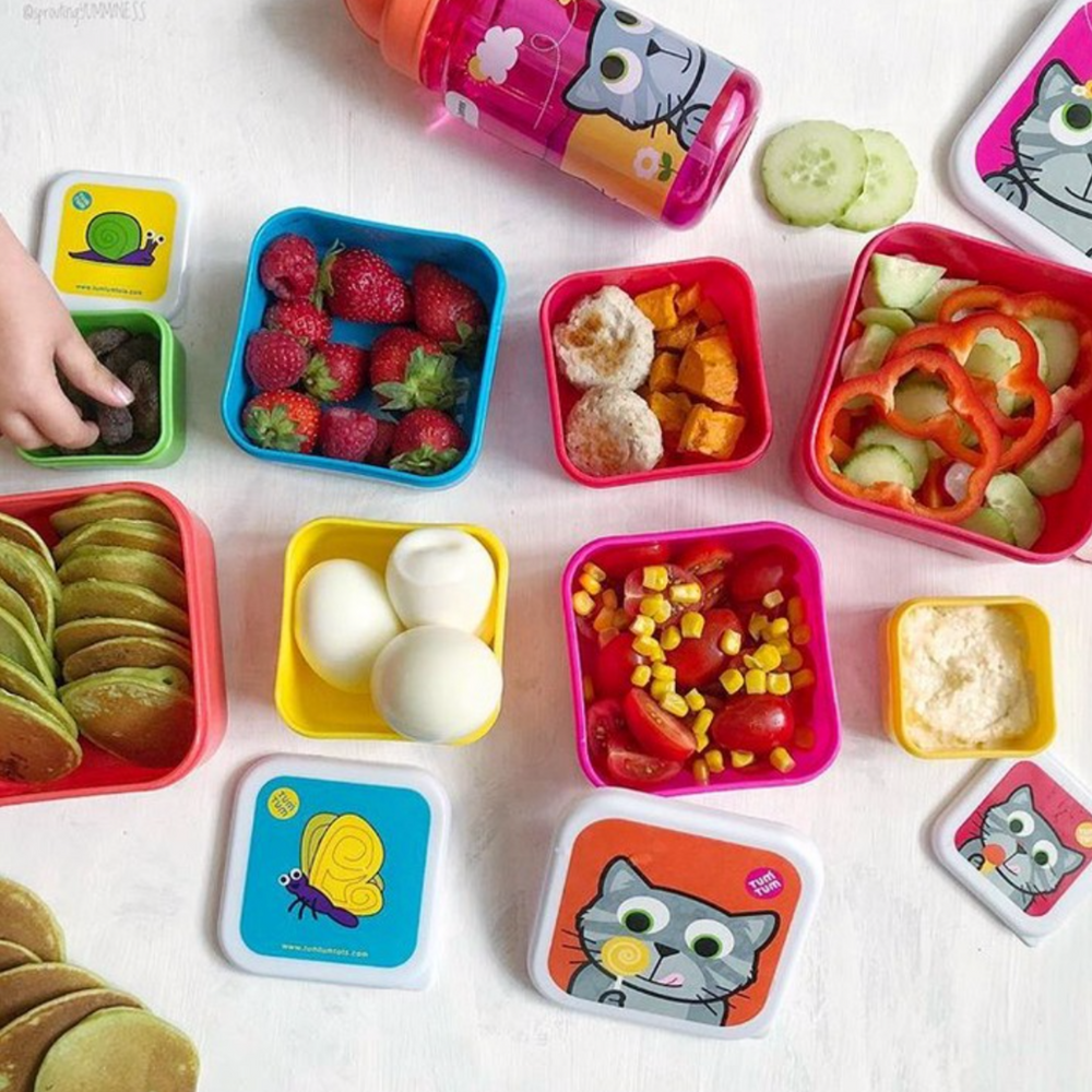 Childrens lunch boxes in cat design