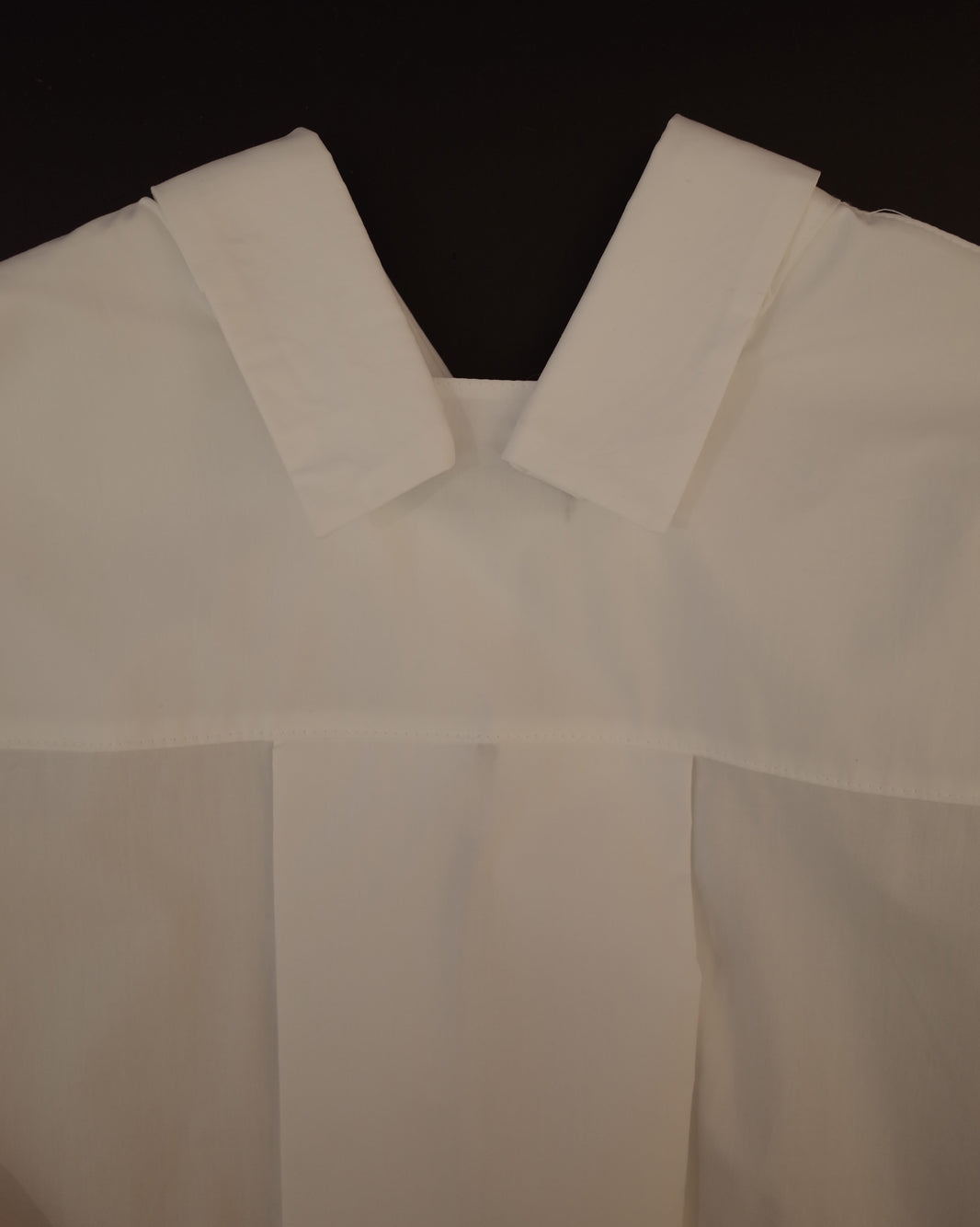 shirt with special collar and sleeves