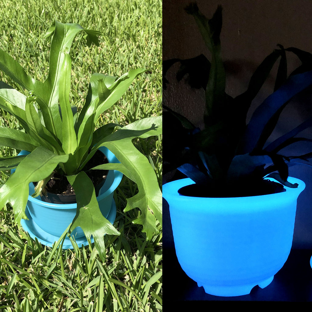 Glow in the dark Plant Container Pot 6""