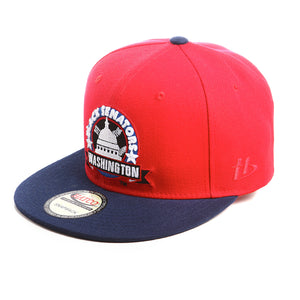 NLBM - Washington Black Senators - Snapback Cap - HATCOcaps.com  - 2