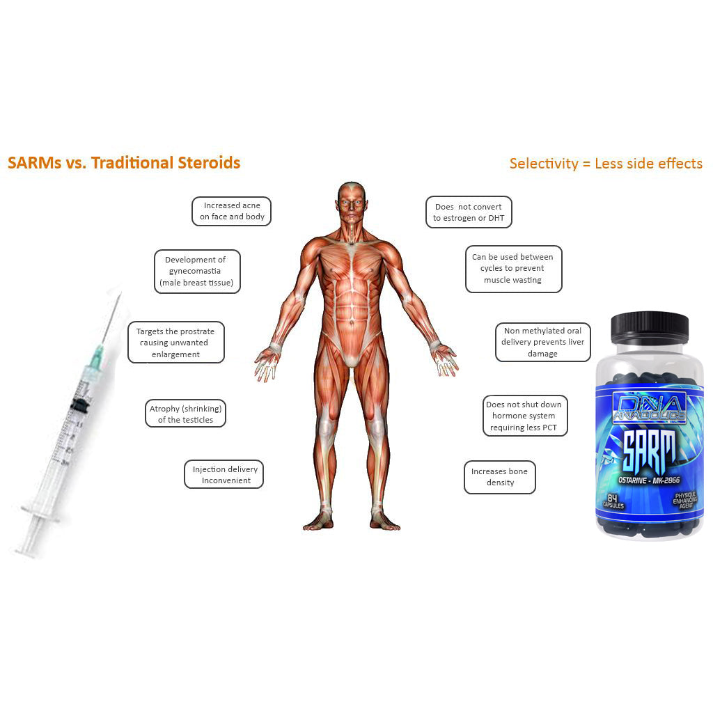 anabolic steroids effects on organs