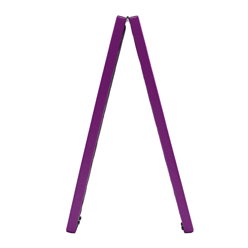 Xn8 Sports Balance Beam Situation Purple