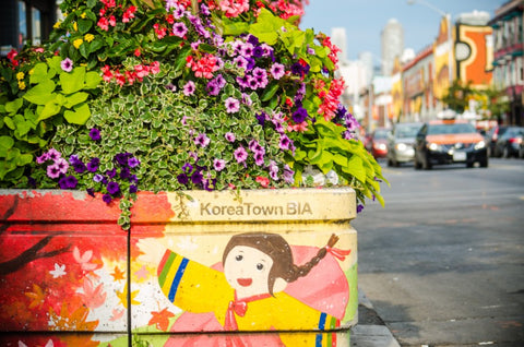 korea town planter