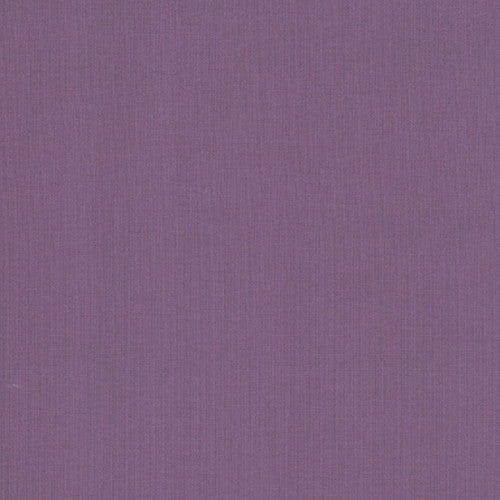 Bella Solids - Aubergine