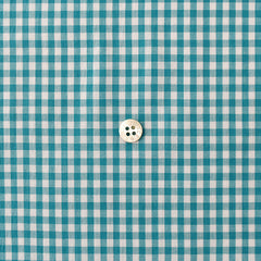 Check & Stripe Gingham Check - Turquoise