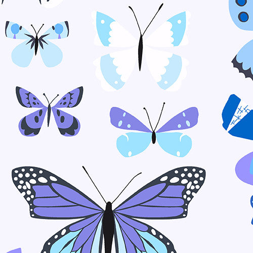Natural History Collection - Butterflies (blue)