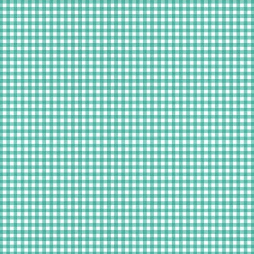 Fruity Friends - Turquoise Gingham 920-T6