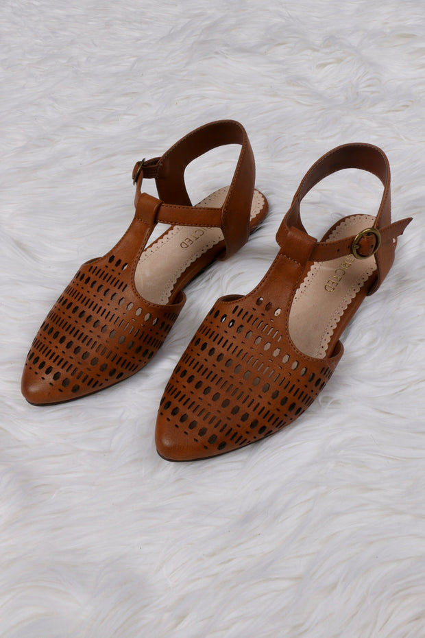Brown Pointy Toe With T-Strap