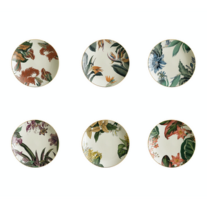 Animalia Soup Plate 4, Set of 6