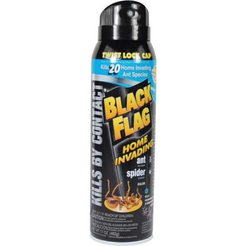 Black Flag Insect Spray Diversion Safe