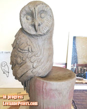 Load image into Gallery viewer, 067 - Owl - large