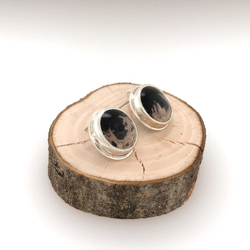 Petrified Palm Root Stud Earrings